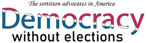 Democracy Without Elections Logo